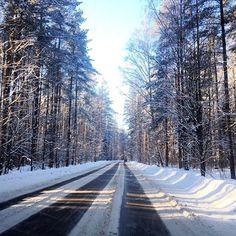 За городом своя атмосфера....#лес #леснойжитель #зимнийлес #дорога #релакс #спб #ло