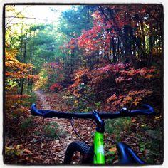 Riding the Pinhoti Mountain Bike Trail from Mulberry Gap in Ellijay, Georgia