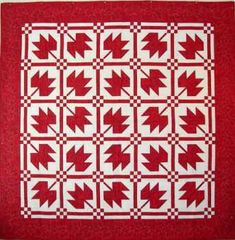 Quilting Classes I Teach, Quilting Retreats and Sampler Quilt Instructions Quilting Classes, Quilting Tips, Quilting Designs, Canadian Quilts, Canadian Flags, Quilts Canada, Red And White Quilts, Quilt Of Valor, Quilt As You Go