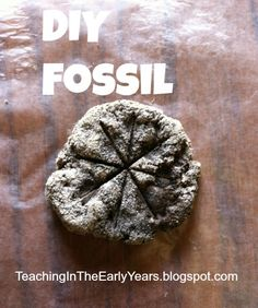 Classroom DIY: DIY Fossils This really is amazing! I enjoy how you included your own photos in this. You happen to be extraordinary. Science Classroom, Teaching Science, Science Activities, Activities For Kids, Crafts For Kids, Classroom Ideas, Scout Activities, Science Experiments, Preschool Activities