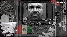 En la tierra de El Chapo bye good night