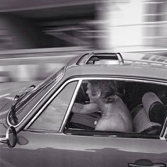 """""""You Only Get One Shot then Keep the Hammer Down.""""  Steve Mcqueen - Sunroof Porsche 911 Drive"""