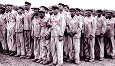 Orgulho ! :-O EVOLUÇÃO E REVOLUÇÃO: HOLOCAUSTO - OS HOMOSSEXUAIS COMO OFERTA QUEIMADA