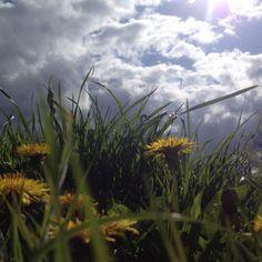 "Jekerdal on a beautiful April day ... Onze voormalige ""achtertuin"".."