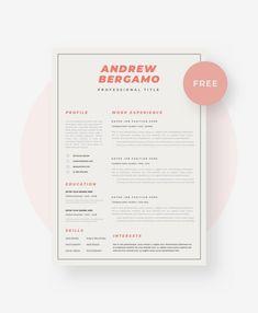 Personal Resuem Templates Modern Short 1 Page Resume