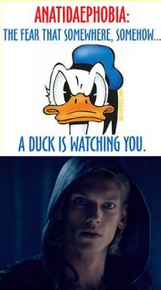 It's a Herondale thing, you wouldn't understand. It makes me wonder if fear and hatred of ducks is hereditary