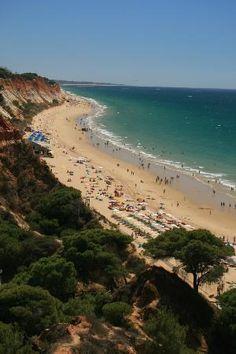 Porto Bay Falesia: Falesia Beach from pool area