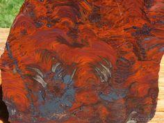 TCR Mary Ellens Jasper Agate lapidary Slab Extraordinary Colors Algae 268 Grams | eBay