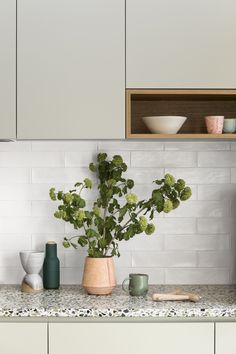 Spring Street Kitchen by Cantilever Interiors. Love the sage green cupboards and textured white tile. Also love the terrazzo bench, but Tim doesn't. Kitchen Interior, New Kitchen, Kitchen Decor, Terrazzo, Küchen Design, Custom Design, Design Ideas, Interior Design, Cuisines Design
