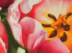 """Large Tulip Painting,21""""x29"""", watercolor on paper 