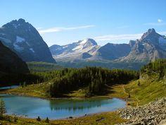 lake o'hara alpine circuit in alberta canada
