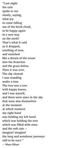 Last Night the Rain Spoke by Mary Oliver Poem Quotes, Words Quotes, Sayings, Qoutes, Camping Photography, Mountain Photography, Mary Oliver Quotes, Stem Challenge, Mountain Quotes