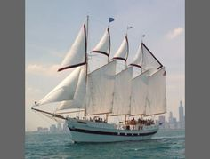 Enjoy a leisurely sail on the Tall Ship Windy, rated highly on Frommer's $55.00 #funsherpa #adventure #Chicago