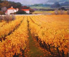 Provence Vineard