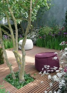 Backyard with a floating platform over a meadow and a cutout for a tree