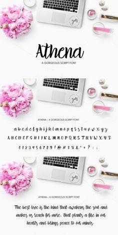Athena   Gorgeous Script Font. Script Fonts. $8.00