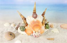 13 DIY Coffee Filter Roses with Instructions Seashell Crown, Seashell Jewelry, Seashell Crafts, Diy Candles With Crayons, Pipe Cleaner Animals, Making Crayons, Flip Flop Wreaths, Diy Crown, Wood Burning Patterns