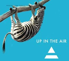 30 Seconds To Mars ~ Up In The Air Looks like Speedy had some of Shannon's coffee