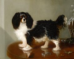 A King Charles Spaniel signed and dated 'Geo Cole. (lower right) oil on canvas. click thru for info on ptg & artist King Charles Puppy, Cavalier King Charles Dog, King Charles Spaniel, Cavalier King Spaniel, Horses And Dogs, Lap Dogs, Animals Images, British, Dog Portraits