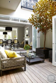 An internal courtyard brings nature into the middle of the home, with potted magnolia trees doubling as a screen for the wall next door.