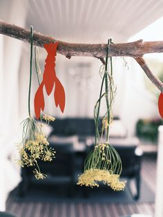 Crab Boil Party, Crawfish Party, Seafood Party, Lobster Boil, Nordic Living, Party Themes, Themed Parties, Dried Flowers, Plant Hanger