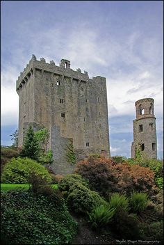 Blarney Castle in Cork, Ireland is absolutely BEAUTIFUL and AMAZING! kissing the blarney stone is an unforgettable experience :) Castle Ruins, Medieval Castle, Beautiful Castles, Beautiful Places, Dream Vacations, Vacation Spots, Ireland Travel, Cork Ireland, Places To Travel