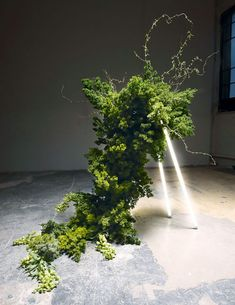 Coyote Flowers (Lauren Sellen, Toronto, Ontario): sculptural composition of organic material for Living installation in collaboration with Luvère Studio, Ikebana, Instalation Art, Wall Art Crafts, Bokashi, Flower Installation, Electric Daisy, Flower Farm, Zinnias, Summer Flowers
