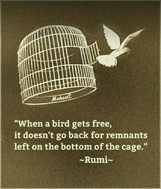 """When a bird gets free, it doesn't go back for remnants left on the bottom of the cage."""