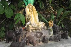 The Garden Has Been Created By A Japanese Former Buddhist