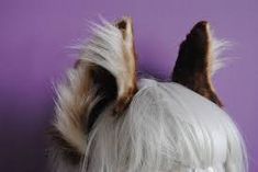 Image result for fox tail and ears diy