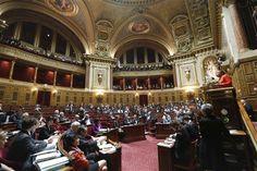 Le Sénat achève l'examen du texte sur le mariage gay - http://www.andlil.com/le-senat-acheve-lexamen-du-texte-sur-le-mariage-gay-110706.html
