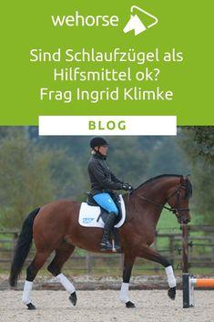 10 bästa bilderna på Ingrid Klimke i 2020   hästar, ridning
