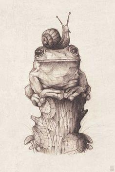 Frog and Snail 2019 Frosch Illustration, Illustration Art, Snail Tattoo, Tattoo Bird, Animal Drawings, Art Drawings, Dessin Old School, Snail Art, Frog Drawing