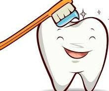 Proper and regular brushing of the teeth is essential for high oral hygiene. Oral Hygiene, Teeth, Temple, Temples, Tooth