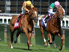 Wise Dan does it again, outlasts Seek Again in a razor wire finish in the Woodford Reserve Turf Classic Stakes at Churchill Downs, Derby day, 5-03-2014
