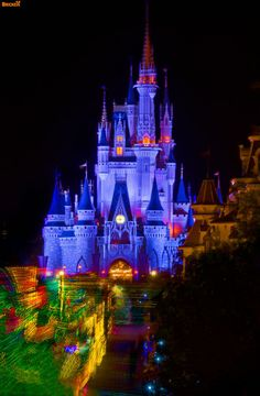 Walt Disney World Magic Kingdom | SpectroMagic photos | Magic Kingdom-Walt Disney World