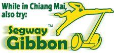 Segway Gibbon Treetopasia