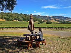Vinícola Field Stone, localizada na cidade de Healdsburg. #california #napavalley #healdsburg #visitnapavalley