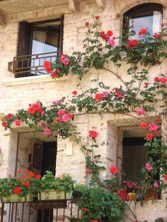Mooie bloemen om de ramen van een huis in Italië.