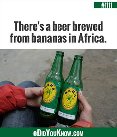 "Raha is ""beer"" made with very ripe bananas Did You Know Trivia, Banana Wine, Fruit Of The Month, How To Make Beer, Beer Brewing, Hot Sauce Bottles, Beer Bottles, Fun Facts, Alcoholic Drinks"