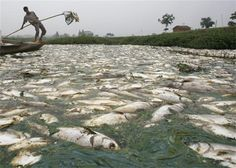 China's Water Pollution