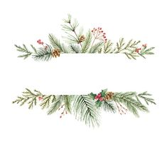 Watercolor vector Christmas banner with fir branches and place for. Watercolor vector Christmas banner with fir branches and place for text. Illustration for greeting cards and invitations isolated on white background. Watercolor Christmas Cards, Christmas Drawing, Watercolor Cards, Christmas Art, Watercolor Paintings, Watercolor Animals, Watercolor Techniques, Watercolor Background, Beautiful Christmas