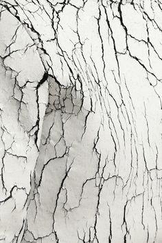Texture | Balenciaga f/w 2013