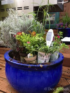 Proven Winners Plant Give-a-way Contest 5/31/12-06/08/12...See Dee Nash's blog-Red Dirt Ramblings for details. Beautiful and dependable plants for your garden!