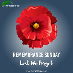 Remembrance Sunday looks very different this year as most parades and memorials have been called off due to social distancing. However, there is still a way for us to honour our fallen heroes by standing on our doorsteps for a two-minute silence to pay tribute to veterans, and those who made the ultimate sacrifice. #remembrancesunday #graveoftheunknownwarrior #westminsterabbeylondon #lestweforget #rememberthefallen #socialdistancing #covid_19 #hemp #hempuk #farmtofuture #hemptology Westminster Abbey London, Hemp Protein Powder, Remember The Fallen, Organic Hemp Seeds, Remembrance Sunday, Hemp Fabric, Fallen Heroes, Lest We Forget, Ancient Civilizations