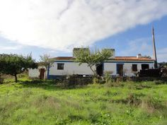 Alentejo with 2 hectares, very close to the Dam of Maranhão. Composed of 200 olive trees, well, electricity, House for recover with excellent location. 120.000 euro