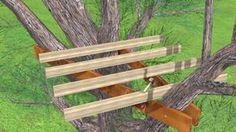 Build a Treehouse Step 17 preview.jpg
