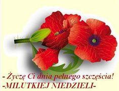 Obraz: Milutkiej niedzieli(1) (mariola55511) - Zdjęcie na Freedisc.pl