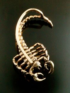 Scorpion Ear Wrap Bronze Scorpion Ear Cuff Scorpion por martymagic