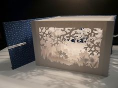 Patricia Cavrois Kirigami, Paper Cutting, Diy Paper, Paper Crafts, Tunnel Book, Licht Box, Laser Paper, Origami And Quilling, Matchbox Art